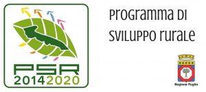 PSR 2014 2020